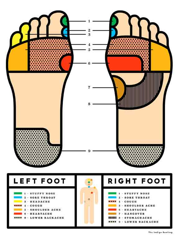 reflexology-map-easy-basic