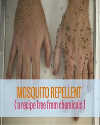 Thumbnail image for Homemade Mosquito Repellent