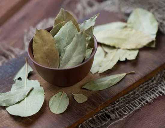 bay-leaves-tea2-1