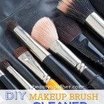 Squeaky Clean DIY Makeup Brush Cleaner