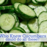 15 Extraordinary Uses for Cucumbers – Who Knew Cucumbers Could Do All These?