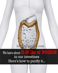 Thumbnail image for You Have About 10 to 20 Pounds Of Poison In Your Colon! Here is How to Purify it