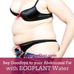 A Simple and Efficient Way for Getting Rid of Abdominal Fat