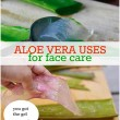 Great Ways to Use Aloe Vera for Beautiful Skin
