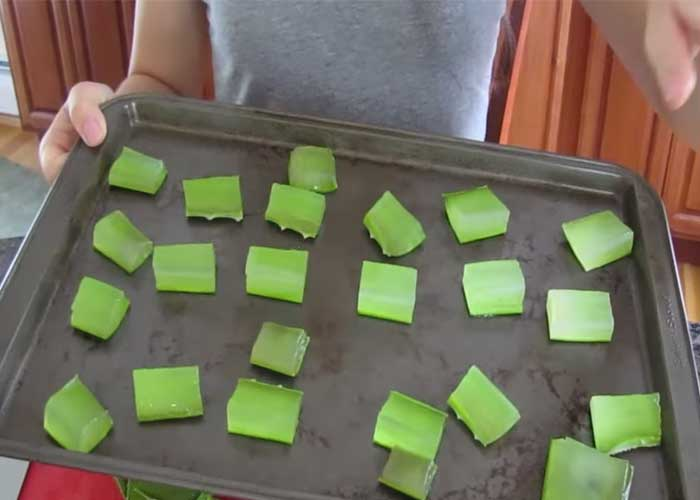 How To Use Aloe Vera Cubes For Pimples Dark Spots And